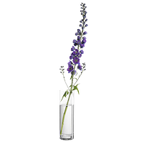 Blumentöpfe, Vasen